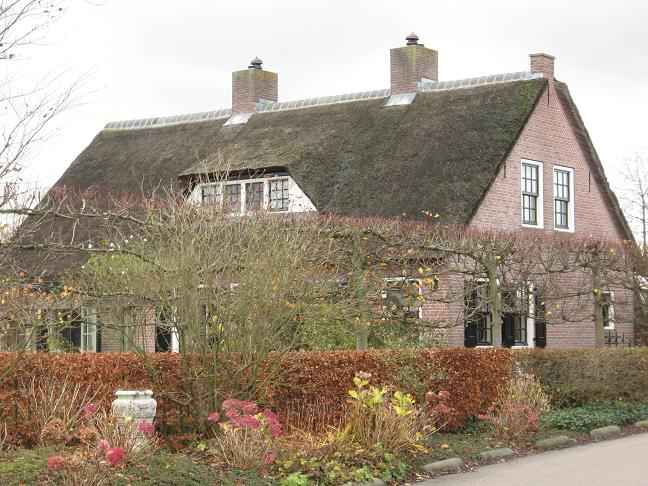 thatched-roof house2
