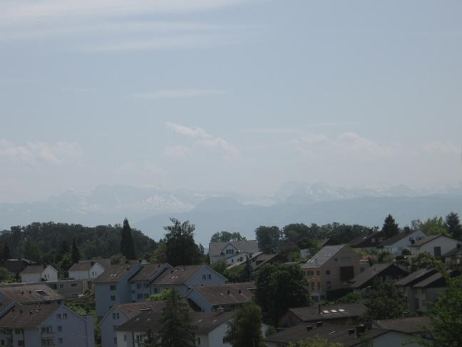 View of Alps from hill in Uster